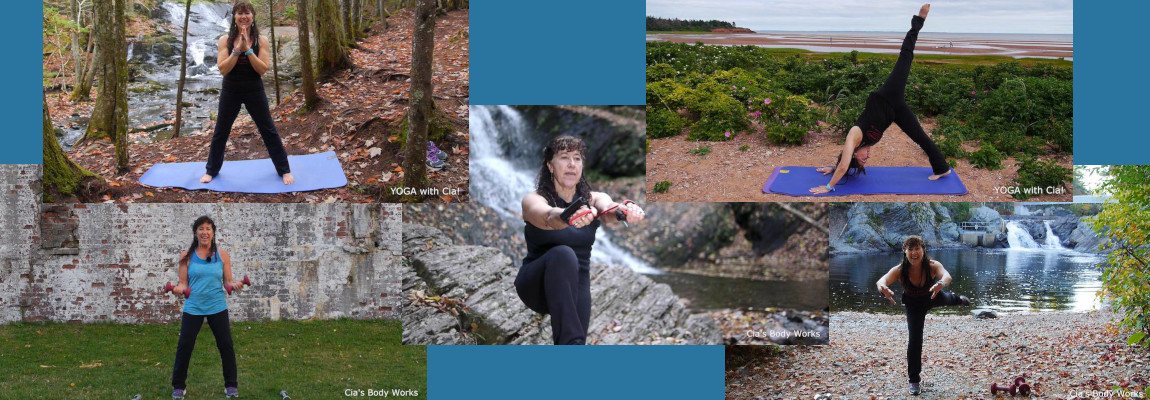 The fitCia 5 Pack:  A Taste of Nature #2
